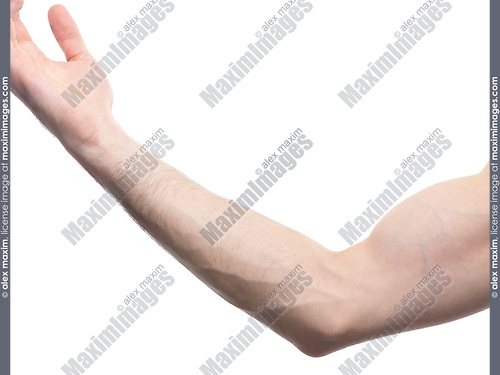 Closeup of male bare arm elbow and biceps isolated on white background