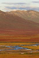 Chandalar shelf in autumn color, Arctic, Alaska