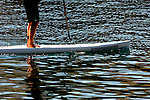 Paddle boarding became a popular sport in 2010.