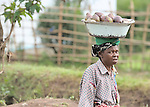 A woman in Kananga, DR Congo, on her way to market.