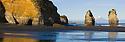 Sea stacks in North Taranaki Bight at sunrise, North Island, New Zealand