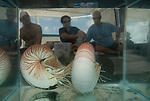 Nautilus Research onboard Undersea Explorer