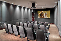 Theater Screen And Hanging Projector