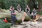 High Elms Tree Surgery  23rd August 2013