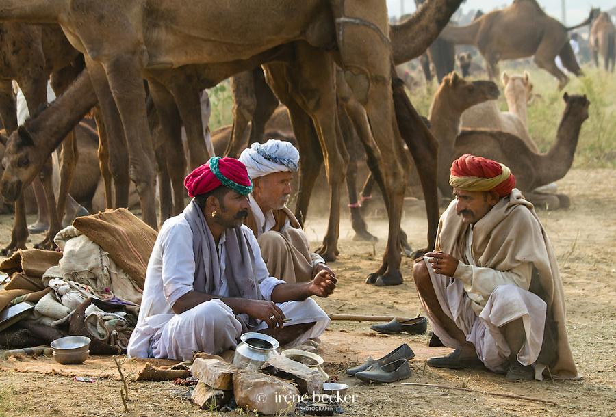 Camel vendors sit next to their camels. Pushkar Camel Fair, Rajasthan, India.