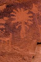 Ancestral Puebloan petroglyphs, Ancient rock art, Souhtern Utah  Proposed Wilderness, Park