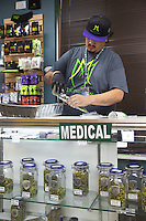 USA. Colorado state. Denver. An employee at Medicine Man is pouring marijuana buds into a plastic bag. He is standing behind the counter in the medical section. Medicine Man began nearly six years ago as a small medical marijuana operation and has since grown to be the largest single marijuana dispensary, both recreational and medical, in the state of Colorado and has aspirations of becoming a national brand if pot legalization continues its march. Cannabis, commonly known as marijuana, is a preparation of the Cannabis plant intended for use as a psychoactive drug and as medicine. Pharmacologically, the principal psychoactive constituent of cannabis is tetrahydrocannabinol (THC); it is one of 483 known compounds in the plant, including at least 84 other cannabinoids, such as cannabidiol (CBD), cannabinol (CBN), tetrahydrocannabivarin (THCV), and cannabigerol (CBG). 18.12.2014 © 2014 Didier Ruef