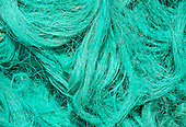 Long Island, New York, Shinnecock Harbor. Fine blue/green nets.