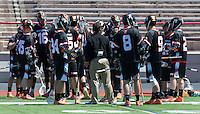 Princeton Lacrosse 2015 Cornell