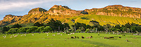 Sunrise over farmland at Paturau with limestone hills on west coast of South Island, Nelson Region, New Zealand, NZ