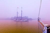 Schooner Heritage in the fog, Pulpit harbor, Penobscot Bay, Maine USA
