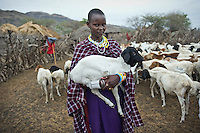 A young Masaai woman holding a small goat in a kraal, an enclosure for cattle or other livestock, on the road between Arusha and Loliondo. The government of Tanzania is planning to turn this dirt track into a highway that will connect isolated communities and bring much needed development to the marginalised Masaai. However, the highway will cut straight through the Serengeti National Park, a World Heritage Site, disrupting animal migration, which would have disastrous consequences for the entire park ecosystem.