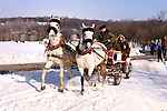 Two white horses with people in a cart Winter scenic Ukraine Eastern Europe Shrovetide celebration 2007