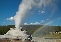 Castle Geyser erupting and rainbow in Yellowstone National Park, Wyoming, USA