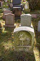 Gravestones for owners' beloved pets in the Hartsdale Pet Cemetery in Hartsdale in Westchester County New York State on Sunday, September 22, 2013. The Hartsdale Pet Cemetery is the first pet cemetery in the United States, started in 1896 and incorporated as a cemetery in 1914. Recently the NYS Division of Cemeteries had ordered animal cemeteries in the state to stop the internment of pet owners' ashes with their pets but after the uproar the order was reversed as long as the cemetery was not charging the owners for the human internment. There are approximately 500 people already interned amongst the over 80,000 dogs, cats and other pets.  (© Richard B. Levine)