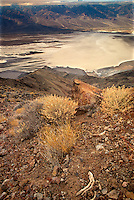 739650003 early morning view over death valley and the panamint mountains from dante's view in death valley national park californai
