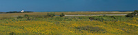 Massachusetts, Eastham, Fort Hill, Salt Pond Bay, Cape Cod National Seashore