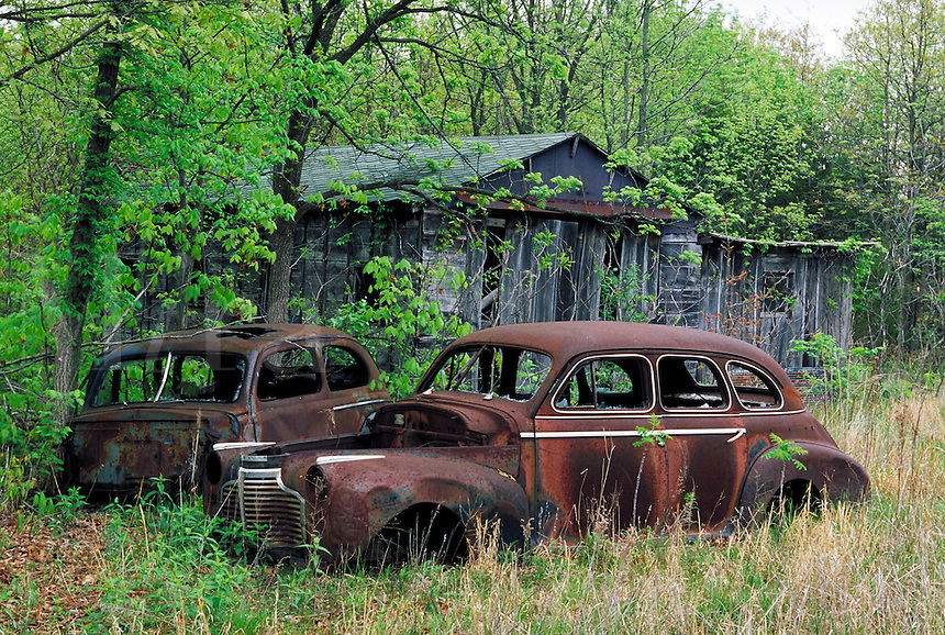 Abandoned, rusty old Ford and Chevy cars next to a delapidated barn; Spring setting; PR#9. Automobiles, car.