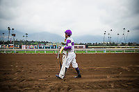 ARCADIA, CA - FEBRUARY 04: Mario Gutierrez after the Robert B. Lewis Stakes at Santa Anita Park on February 4, 2017 in Arcadia, California. (Photo by Alex Evers/Eclipse Sportswire/Getty Images)