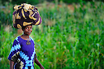 A woman carries a bundle on her head as she walks through a cornfield in Karonga, a town in northern Malawi.