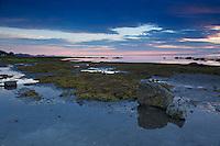 marée basse à Rimouski. Low tide in Rimouski