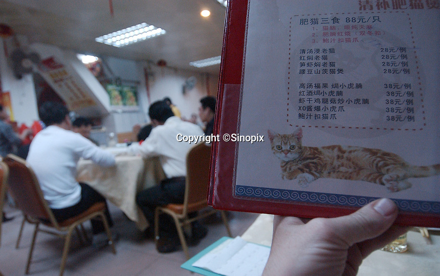 The menu at the King of Cat Restaurant in Guangzhou, China.  Cat meat is becomming increasingly popular in the south of China especially in winter months. the restaurant that specialises in cat dishes has a whole range of cat dishes for sale.