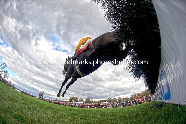 10/19/2014 - Far Hills Races