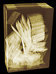 X-ray image of a box of wheat crackers (color on black) by Jim Wehtje, specialist in x-ray art and design images.