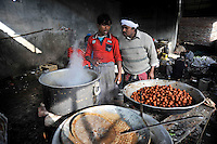 Cooks at work at Grewal Farms, one of many wedding reception centres in Amritsar which employs hundreds of staff during the wedding season to work around the clock hosting day and night marriage ceremonies and parties.