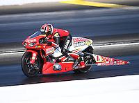 May 14, 2016; Commerce, GA, USA; NHRA pro stock motorcycle rider Hector Arana Jr during qualifying for the Southern Nationals at Atlanta Dragway. Mandatory Credit: Mark J. Rebilas-USA TODAY Sports