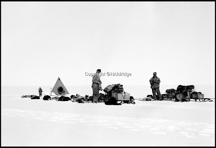 BNPS.co.uk (01202 558833)<br /> Pic: HAldridge/BNPS<br /> <br /> The dog teams at rest.<br /> <br /> Poignant unseen photographs taken by Lt Bowers of Scott's ill-fated 1912 Antarctic expedition have come to light. <br /> <br /> Bowers perished with Scott on their return from the South Pole, but these photographs taken by him were returned to Britain with expedition photographer Herbert Ponting.<br /> <br /> They show the team with their dogs and ponies on the Ross Ice Shelf preparing for their doomed departure for the Pole.