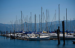 Idaho, North. Lake Pend Oreille, Bayview. Sailboats docked in the sailboat marina on Scenic Bay.