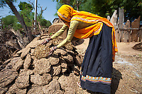 Indian woman working at farm smallholding drying cow dung for cooking fuel at Kutalpura Village in Rajasthan, Northern India RESERVED USE - NOT FOR DOWNLOAD -  FOR USE CONTACT TIM GRAHAM