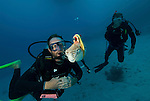 Nautilus scientific team observing nautilus with radio transmitter underwater.
