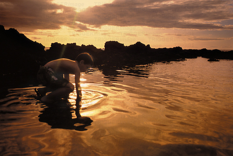 A young boy kneels down into the water and reaches for something in the sand