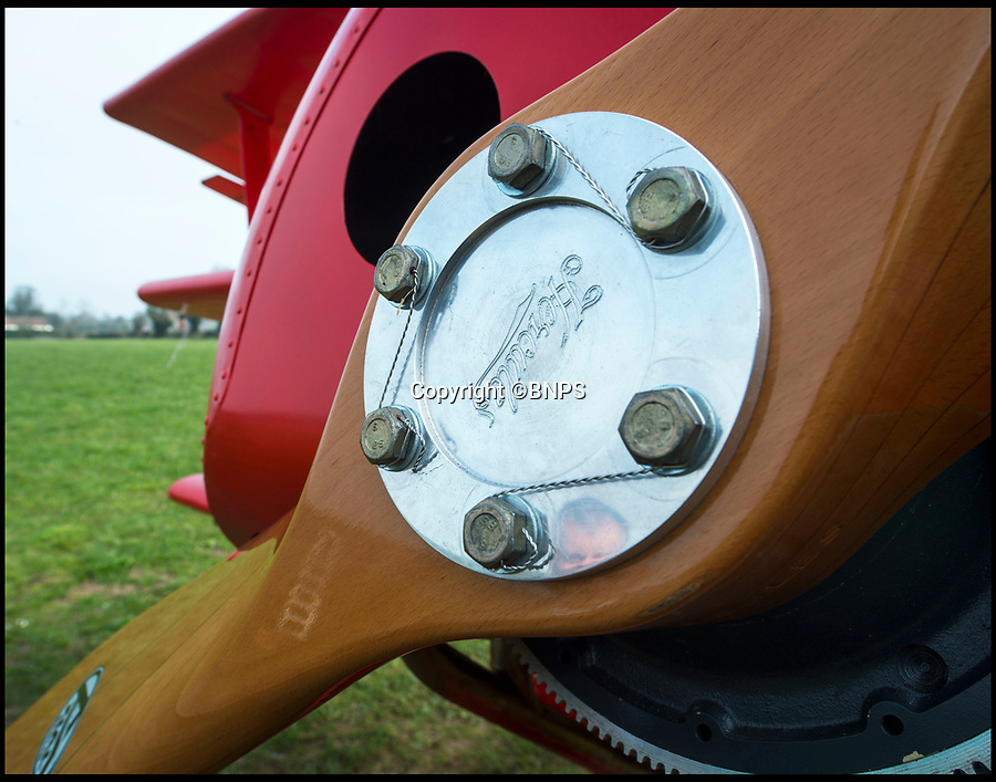 BNPS.co.uk (01202 558833)<br /> Pic: PhilYeomans/BNPS<br /> <br /> Beautifully laminated 'Hercules' propellor.<br /> <br /> Dreaded Red Baron to fly again...WW1 Ace's feared 'Fokker Dreidecker' to finally fly over Britain.<br /> <br /> A German GP based in Norfolk has spent 8 years building a Fokker triplane in his garage as a tribute to infamous WW1 Ace Manfred von Ricthofen, who terrorised the skies over the Western front during the first war.<br /> <br /> Dr Peter Brueggemann, 52, will fulfil his childhood dream and emulate the notorious German fighter pilot when the Dreidecker Dr.1 fighter finally achieves lift-off this summer.<br /> <br /> Dr Brueggemann has even acquired the title Baron from the independent territory of Sealand so he can take to the skies as Baron Peter von Brueggemann in homage to his idol.<br /> <br /> The GP at the Holt Medical Practice in Norfolk hopes to be airborne in a few months once tests on the engine are completed at Felthorpe airfield near Norwich where he has devoted thousands of hours to the project.<br /> <br /> The father-of-two, who has lived in England with wife Sue for 20 years, has been taking flying lessons since his project began.