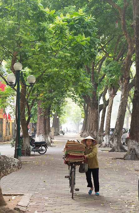 Trees align the roads in the middle of Hanoi.<br /> Hanoi, the capital of Vietnam, is known for its centuries-old architecture and a rich culture with Southeast Asian, Chinese and French influences. At its heart is the chaotic Old Quarter, where the narrow streets are roughly arranged by trade. There are many little temples, including Bach Ma, honoring a legendary horse, plus Đồng Xu&acirc;n Market, selling household goods and street food.