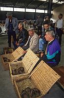 Europe/France/Midi-Pyr&eacute;n&eacute;es/81/Tarn/R&eacute;almont: Sur le march&eacute; paysan - fermiers vendant leurs lapins<br /> PHOTO D'ARCHIVES // ARCHIVAL IMAGES<br /> FRANCE 1990