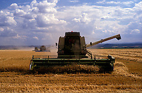 AJ2192, Wheat, machinery, harvest, Germany, Europe, Harvesting golden field of wheat by farm equipment in scenic Thuringian, former East Germany.