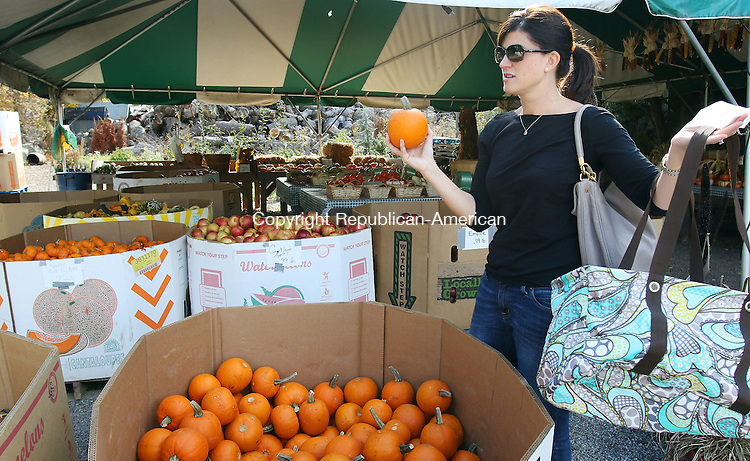 MIDDLEBURY CT. 26 October 2015-102715SV09-Cristin Smutney of Watertown stopped by Vaszaukas Farm to pick up 25 pumpkins in Middlebury Tuesday. Smutney is a room mom for a 5th grade class at Judson School in Watertown. The students were going to decorate the pumpkins for Halloween. <br /> Steven Valenti Republican-American