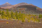 El Teide Volcano, Tenerife, Canary Islands