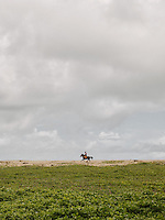 A Sumbanese rides his horse along the shoreline of the Wainyapu village.