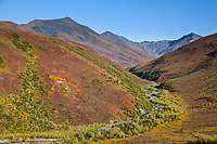 Headwaters of the Dietrich River, Brooks range, arctic, Alaska.