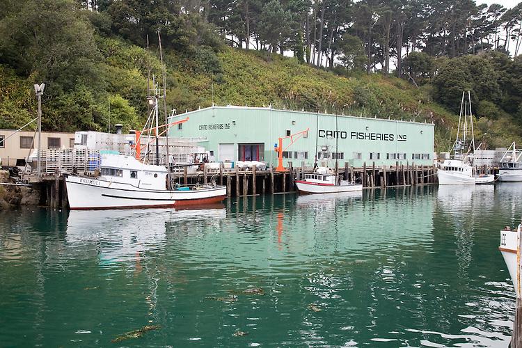 Img john birchard photography for Fort bragg fishing charters