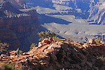 Man hiking South Kaibab Trail