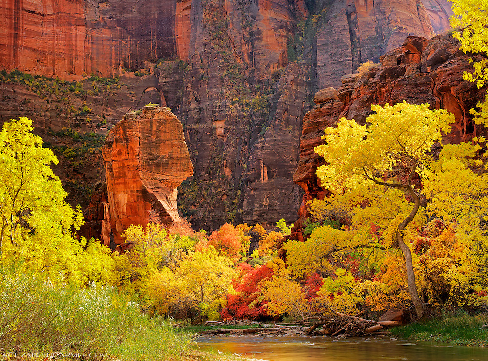 Autumn in Zion Canyon