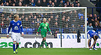 BOLTON, ENGLAND - Saturday, January 26, 2013: Everton's goalkeeper Tim Howard looks dejected after Bolton Wanderers' first equalising goal during the FA Cup 4th Round match at the Reebok Stadium. (Pic by David Rawcliffe/Propaganda)