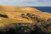 Farm on Victorian coastline.<br /> <br /> Larger JPEG + TIFF images available by contacting use through our contact page at :..www.photography4business.com