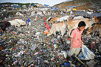 Taupik, 14, searching for plastic and metal at the active section of the 'Trash mountain', Makassar, Sulawesi, Indonesia.