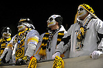 PITTSBURGH, PA - JANUARY 23: Fans of the Pittsburgh Steelers cheer on their team during the game between the Pittsburgh Steelers and the New York Jets in the AFC Championship Playoff Game at Heinz Field on January 23, 2011 in Pittsburgh, Pennsylvania(Photo by: Rob Tringali) *** Local Caption *